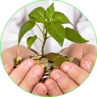 Wealth-Management3